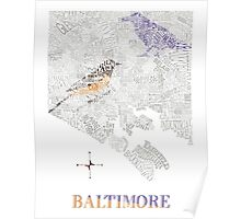 Baltimore City oriole/raven Neighborhood Map Poster