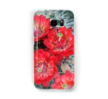 Red cactus flowers Samsung Galaxy Case/Skin
