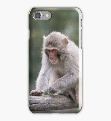 little monkey iPhone Case/Skin