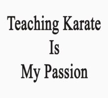 Teaching Karate Is My Passion by supernova23