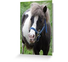 Got any apples for me? Greeting Card