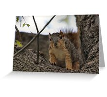 Nosey Guy Greeting Card