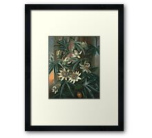 Philip Reinagle - Blue Passion Flower 1800. Still life with flowers: still life with flowers, flowers, blossom, nature, botanical,  leaves, wonderful flower, plants,  leaf, garden,  passion Framed Print