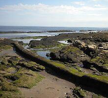 Rocky Coastline near St. Andrews  by azidearest