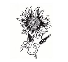 Sunflower Song by emvanhwood