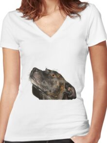 Serenity staffie Women's Fitted V-Neck T-Shirt
