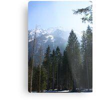 Alpine Austria Metal Print