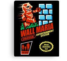Wall Maria Entertainment System Canvas Print
