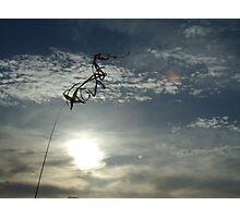Wind Sock Photographic Print