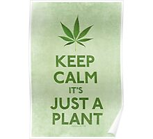 Keep Calm It's Just A Plant Poster