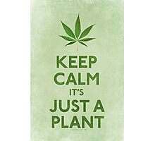Keep Calm It's Just A Plant Photographic Print