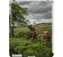 Curious Cows iPad Case/Skin