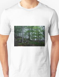 A forest from almost ghostly appearance Unisex T-Shirt