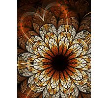 Passion - Abstract Fractal Artwork Photographic Print