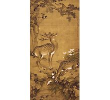 Shen Nanpin - A Birthday Painting, Qing Dynasty (1644-1911). Forest view: forest , trees, fauna, nature, birds, animals, flora, flowers, plants, field, weekend Photographic Print