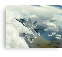 Stealth And Spirit Canvas Print