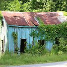 Old Blue Shack by virginian