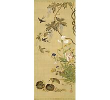 Suzuki Kiitsu - Birds And Flowers. Forest view: forest , trees,  fauna, nature, birds, animals, flora, flowers, plants, field, weekend Photographic Print