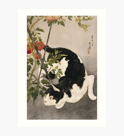 Takahashi Hiroaki - Cat Prowling Around A Staked Tomato Plant. Cat portrait: cute cat, kitten, kitty, cats, pets, wild life, animal, smile, little, kids, baby Art Print