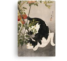 Takahashi Hiroaki - Cat Prowling Around A Staked Tomato Plant. Cat portrait: cute cat, kitten, kitty, cats, pets, wild life, animal, smile, little, kids, baby Canvas Print