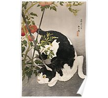 Takahashi Hiroaki - Cat Prowling Around A Staked Tomato Plant. Cat portrait: cute cat, kitten, kitty, cats, pets, wild life, animal, smile, little, kids, baby Poster