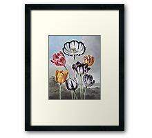 Robert John Thornton - Tulips. Still life with flowers:  bouquet, flowers, bumblebee , carnations, peonies, roses, tulips,  marigolds,  life, garden, blossom Framed Print