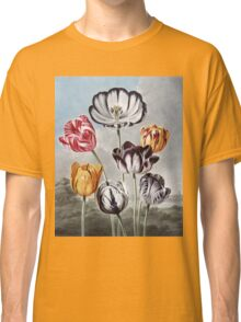 Robert John Thornton - Tulips. Still life with flowers:  bouquet, flowers, bumblebee , carnations, peonies, roses, tulips,  marigolds,  life, garden, blossom Classic T-Shirt
