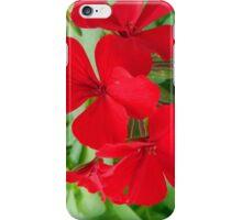 Red Geraniums iPhone Case/Skin