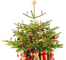 Christmas tree  by 3523studio