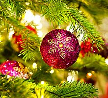 Bauble in a real Christmas tree in bright color  by 3523studio