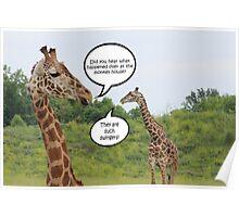 Giraffes Having a Chat Poster