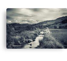 The Stream Canvas Print