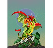 Peppers Dragon Photographic Print