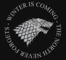 House Stark - Winter Is Coming by Sculder1013
