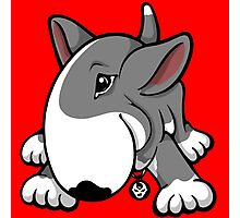 Let's Play English Bull Terrier Grey  Photographic Print