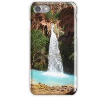 Arizona iPhone Case/Skin