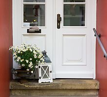 Cute White Door by PatiDesigns