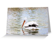 Pelican In The Water Greeting Card