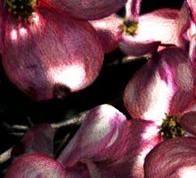 Dogwood at night Sticker