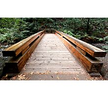 Forest Bridge Photographic Print