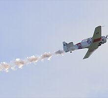 North American T-6 Harvard...............! by Roy  Massicks