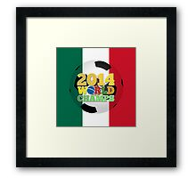2014 World Champs Ball - Mexico Framed Print