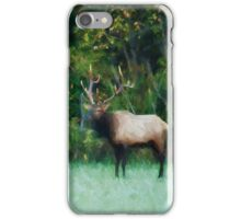 Autumn Elk iPhone Case/Skin