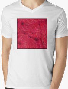 Canyon Wall Mens V-Neck T-Shirt