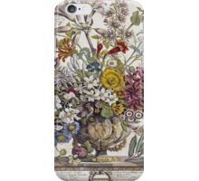 Robert Furber - Twelve Months Of Flowers. Still life with flowers: flowers, bumblebee , carnations, peonies, roses, tulips,  marigolds,  life, garden, blossom, vase iPhone Case/Skin