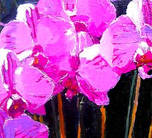 Rose Pink Orchids by lynnGrayson