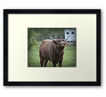 Smile If You're Happy! Framed Print