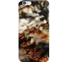Steps and autumn leaves iPhone Case/Skin