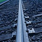 On the Right Track by Buckwhite