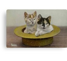 Cats in a Hat Canvas Print